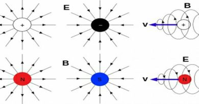 Featured image showing magnetic monopoles